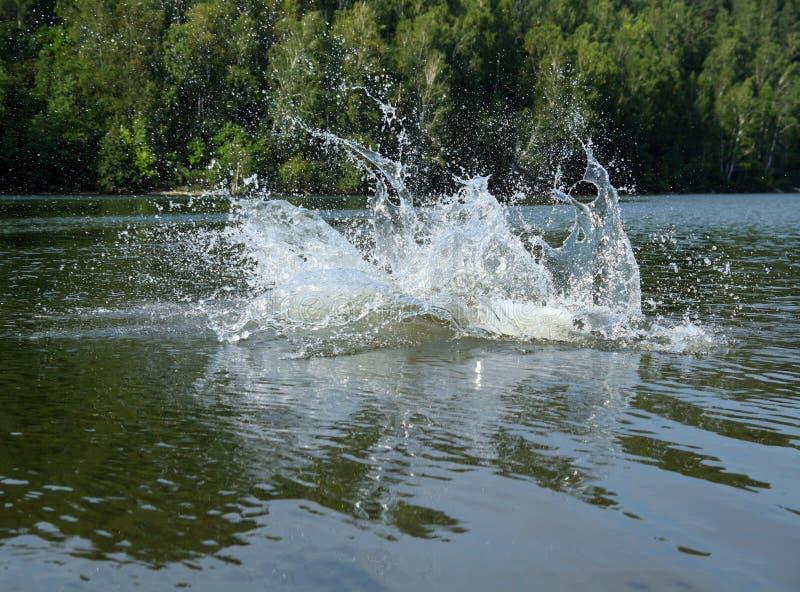 Grande éclaboussure De L Eau Dans Le Lac Photos libres de droits