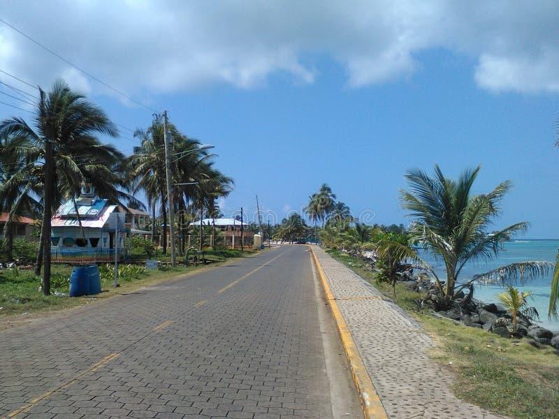 Grande île de maïs images libres de droits