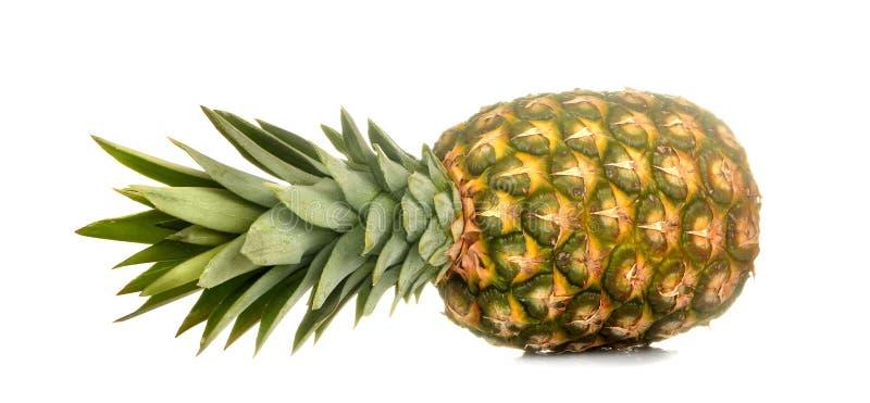 Grande abacaxi maduro fresco do fruto em um fundo isolado branco Fruto, ver?o fotografia de stock