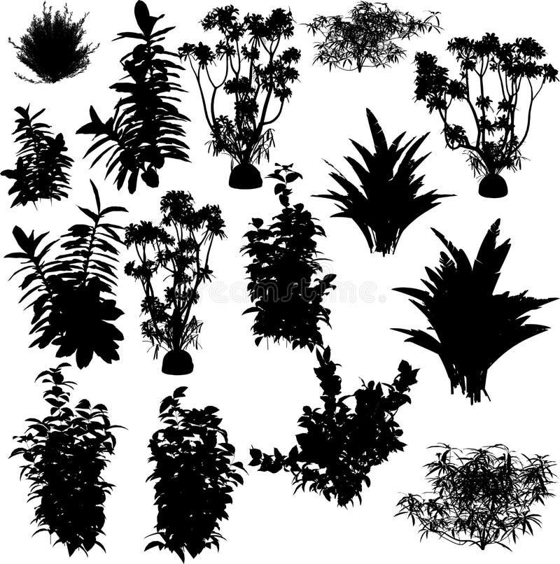 Grande accumulazione di VETTORE della pianta illustrazione vettoriale