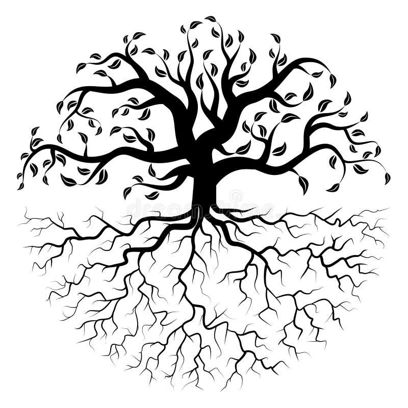 Grande albero con le radici nella forma circolare illustrazione vettoriale