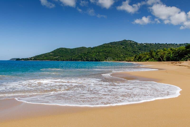 Grande Anse Beach stock photography