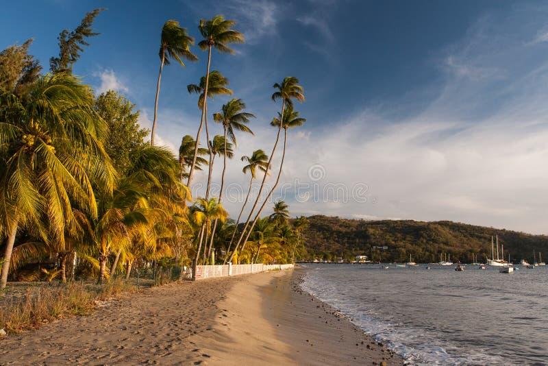 Grande Anse d'Arlet, Martinique stock photos