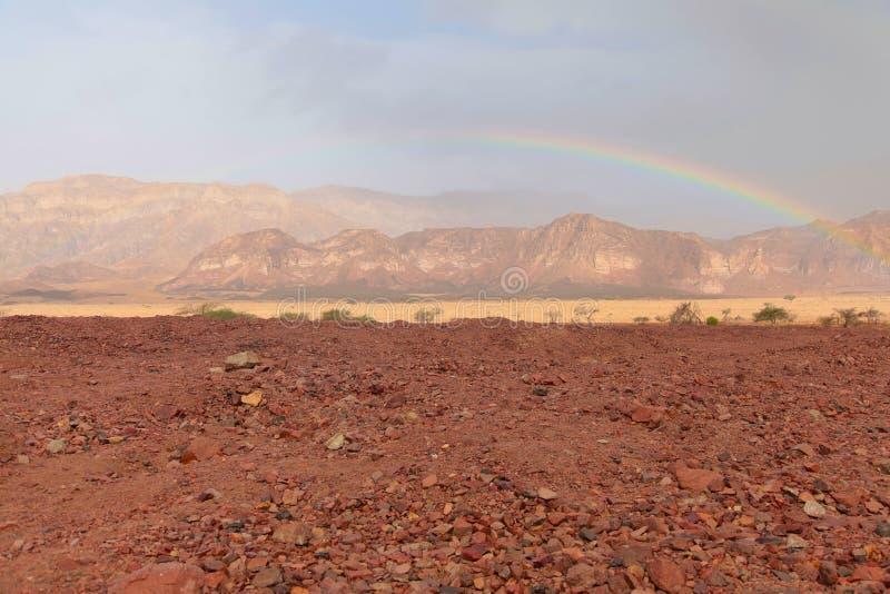 Grande arcobaleno in deserto, Israele fotografia stock libera da diritti