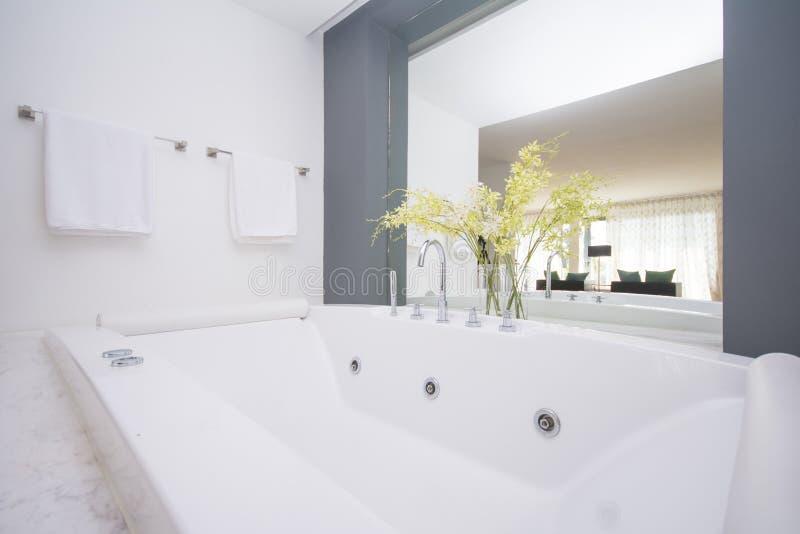 grande baignoire de luxe dans la salle de bains photo stock image du baignoire loisirs 55072038. Black Bedroom Furniture Sets. Home Design Ideas