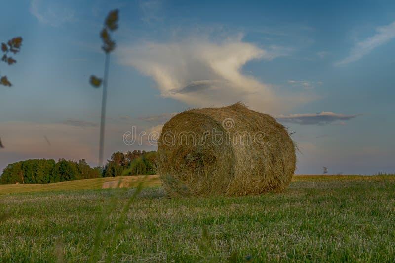 Grande balle de foin ronde sur un champ de ferme au coucher du soleil image stock