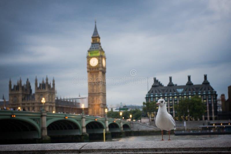 Grande Ben a Londra