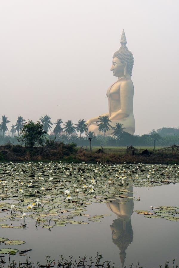 Grande Buda de assento acima das palmeiras e dos campos do arroz A Buda a mais grande de Tailândia Ang Thong Province, Tailândia foto de stock