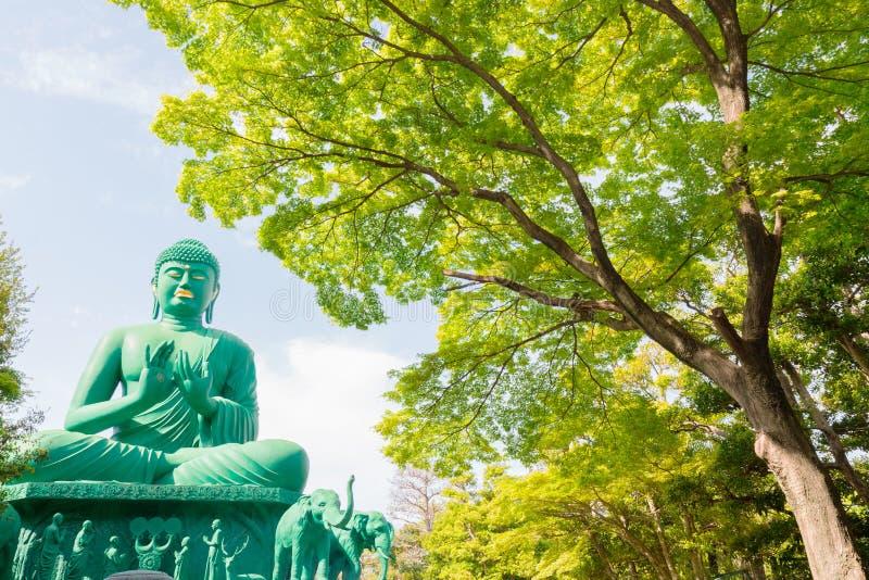 A grande Buda de Nagoya com lugar tranquilo na floresta foto de stock royalty free