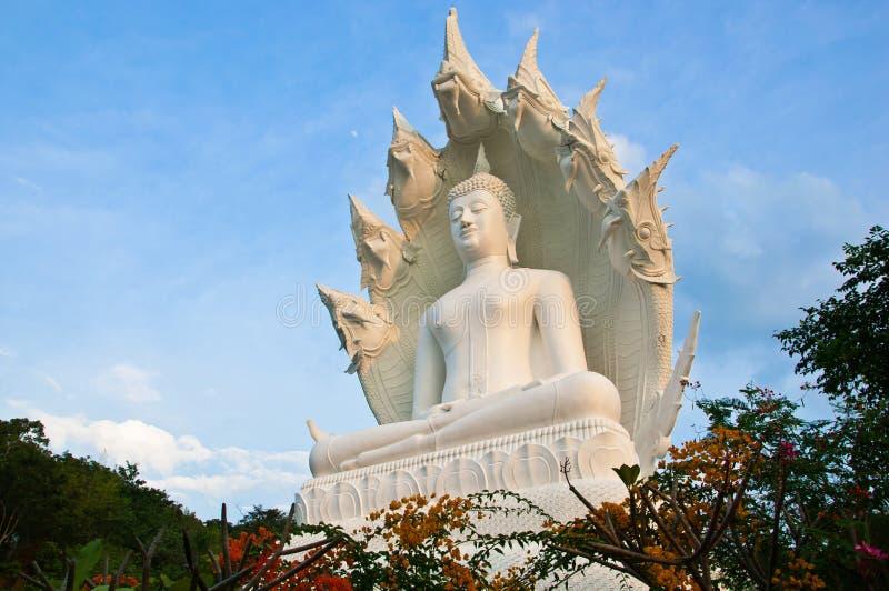 Grande Buddha branco. foto de stock royalty free