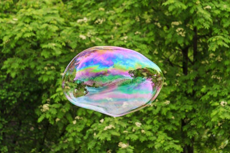 Grande bulle de savon sur le fond de nature image stock