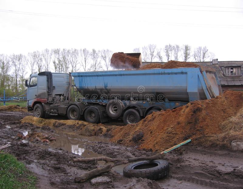 Grande caminhão de multi-tonelada colado no estrume das cargas da lama em deslizamentos da exploração agrícola imagem de stock