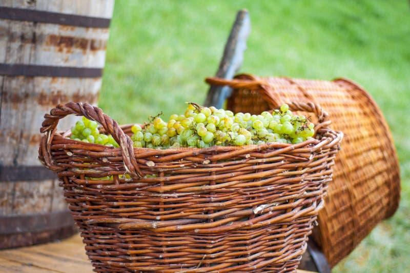 Grande canestro con l'uva immagini stock