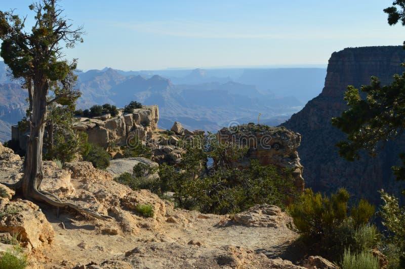 Grande canyon del fiume di colorado Formazioni geologiche fotografie stock libere da diritti