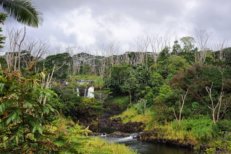 Grande cascade d'île photos libres de droits