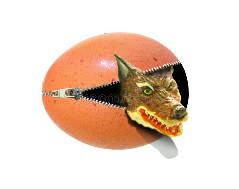Grande cattivo attacco di sorpresa del lupo che emerge dall'uovo aprire la zip illustrazione vettoriale