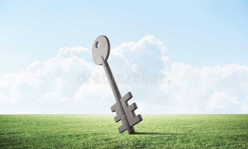 Grande chiave della casa sul campo verde illustrazione vettoriale