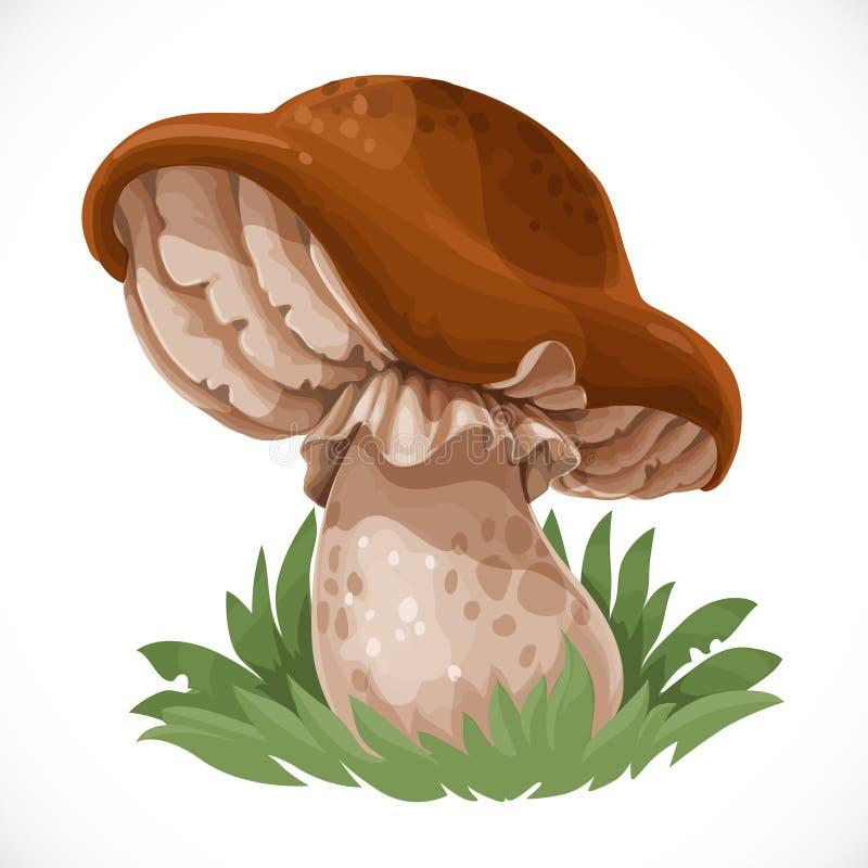 Grande cogumelo comestível na grama ilustração royalty free