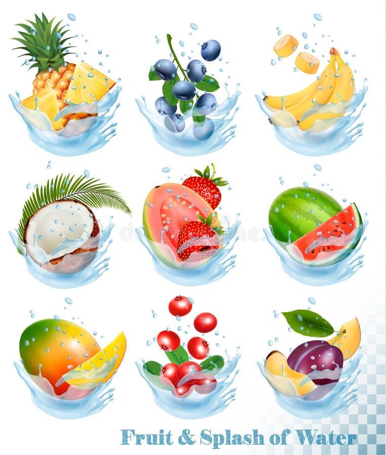 Grande collection de fruit dans une éclaboussure de l'eau illustration stock