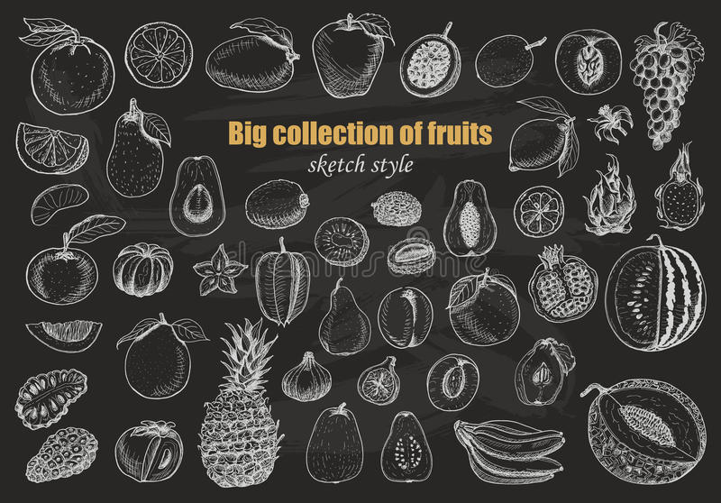 Grande collection de fruits sur le fond foncé illustration de vecteur