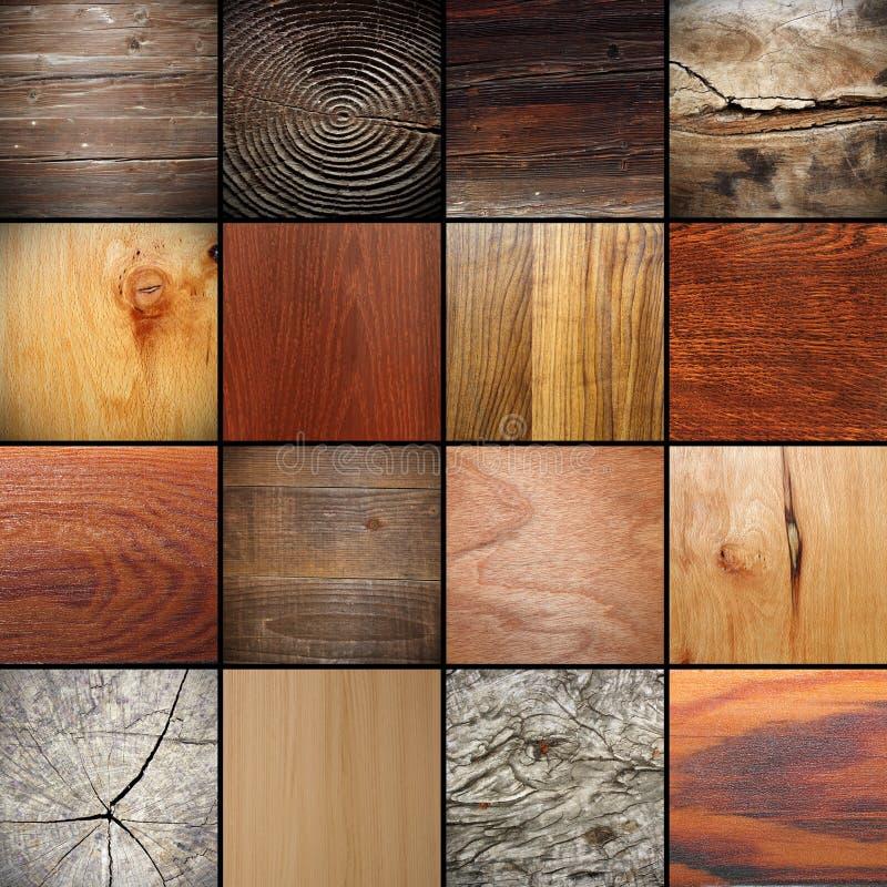 Grande collection de textures en bois images libres de droits