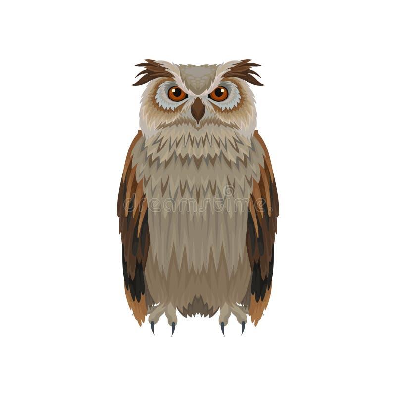 Grande coruja horned com plumagem marrom, vista dianteira Grande pássaro da floresta Tema da ornitologia e da fauna Ícone liso do ilustração royalty free