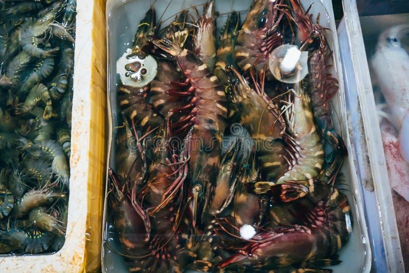 Grande crevette fraîche royale sur le compteur de boutique photographie stock