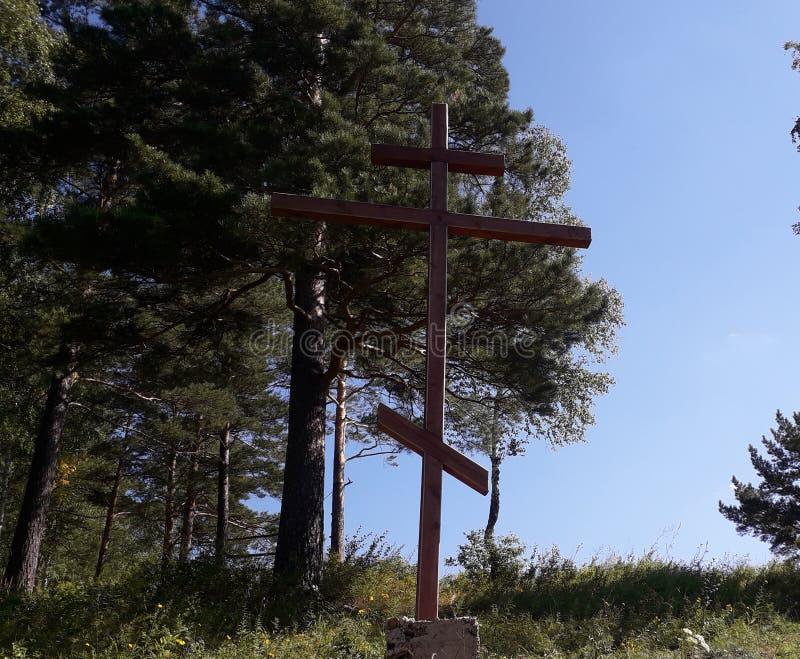 Grande cruz de madeira da adoração no fundo do céu azul e do pinho imagem de stock