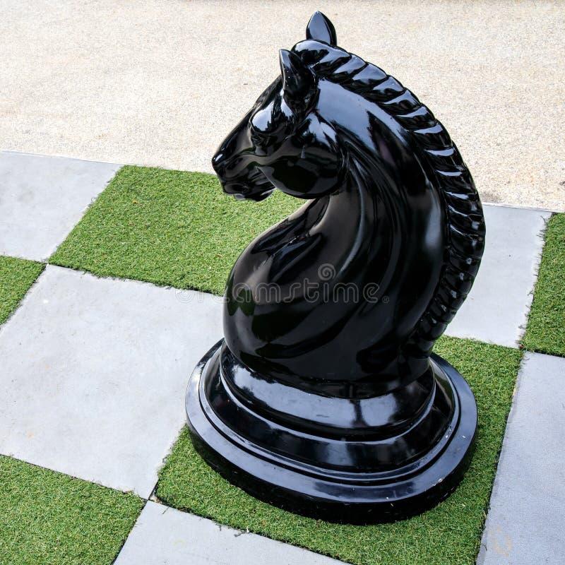 Grande di scacchi del cavallo nero o scuro ad all'aperto immagini stock