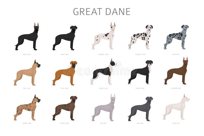 Grande dinamarqu?s Variaties diferentes do grupo do cão da cor do revestimento imagens de stock