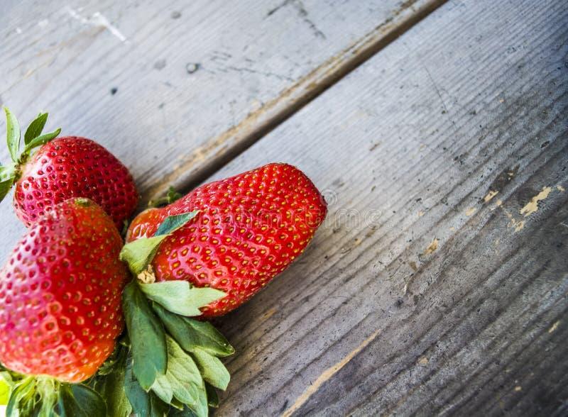 Grande ed intera fragola fresca su un fondo di legno Bacca saporita di estate Vitamine Alimento sano utile immagine stock libera da diritti