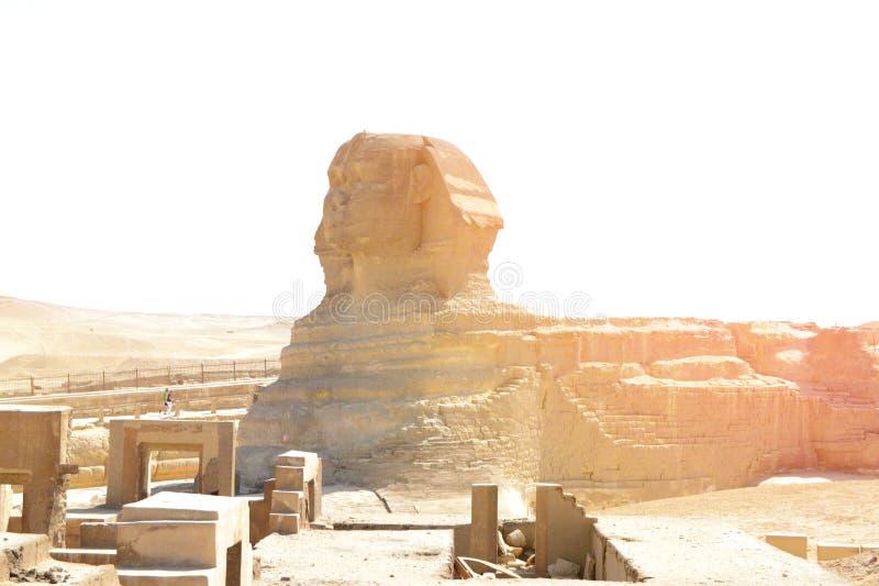Grande esfinge em Giza imagem de stock royalty free