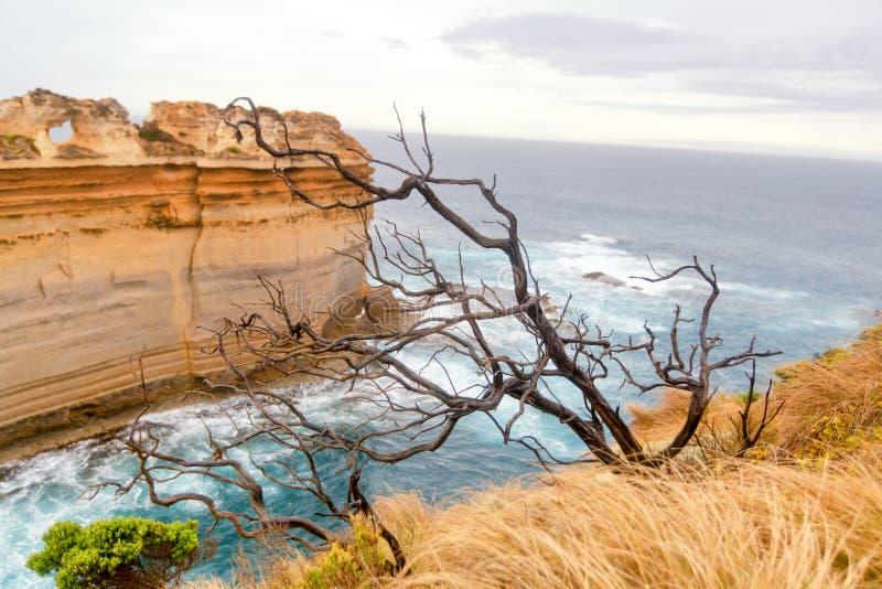 Grande estrada do oceano, Austrália Vista que negligencia o Oceano Pacífico fotografia de stock royalty free