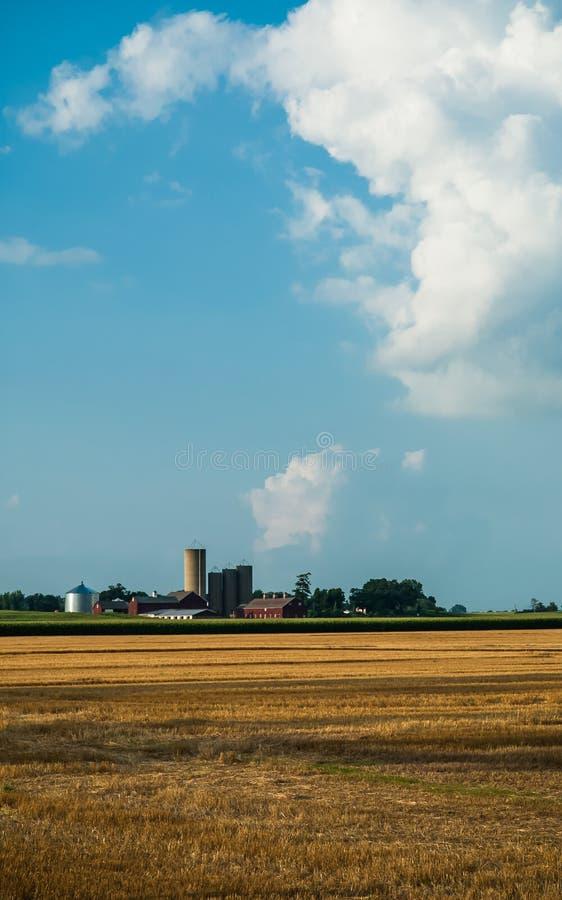 Grande exploração agrícola fotografia de stock royalty free