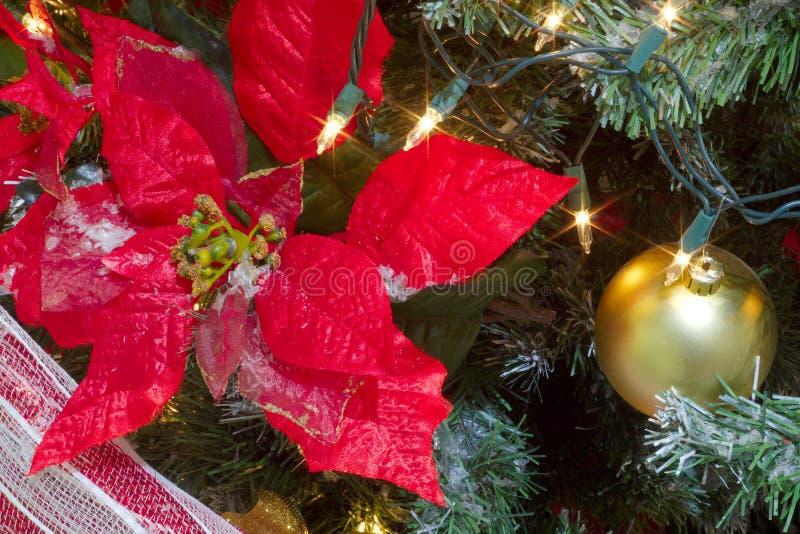 Grande fiore rosso della stella di Natale per la decorazione dell'albero di Natale fotografia stock libera da diritti