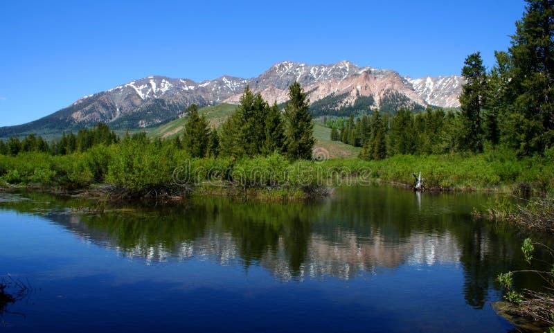 Grande fiume di legno fotografie stock libere da diritti