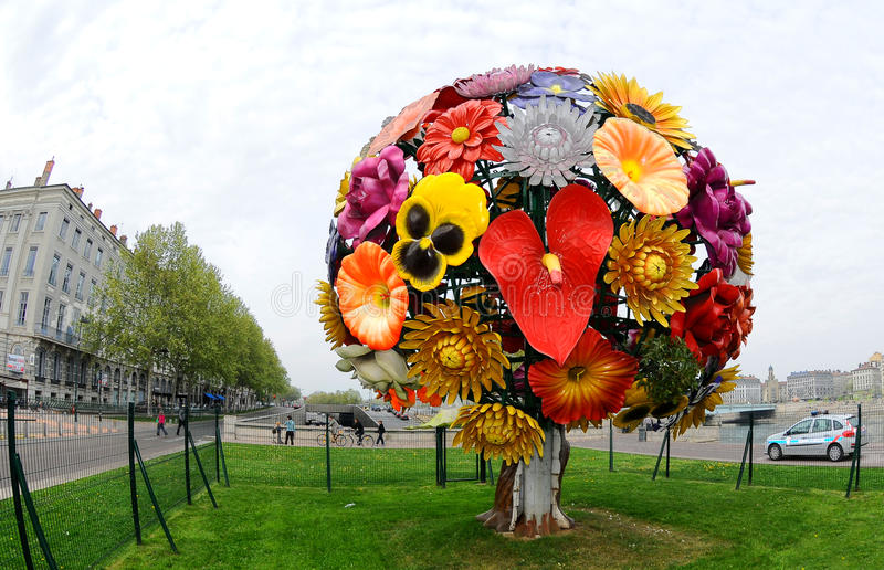 Grande fleur à Lyon photos libres de droits