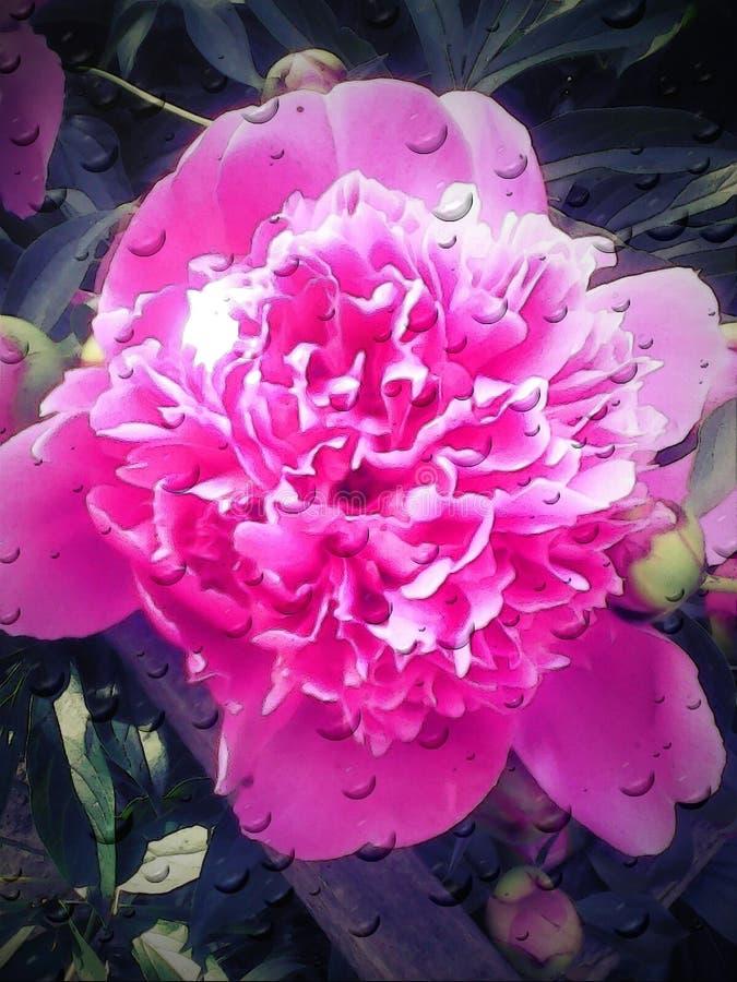 Grande fleur illustration libre de droits