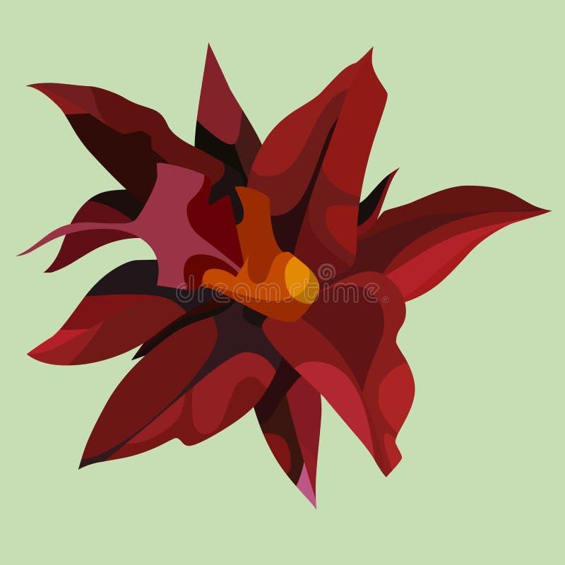 Grande fleur rouge tropicale exotique simple tirée illustration libre de droits