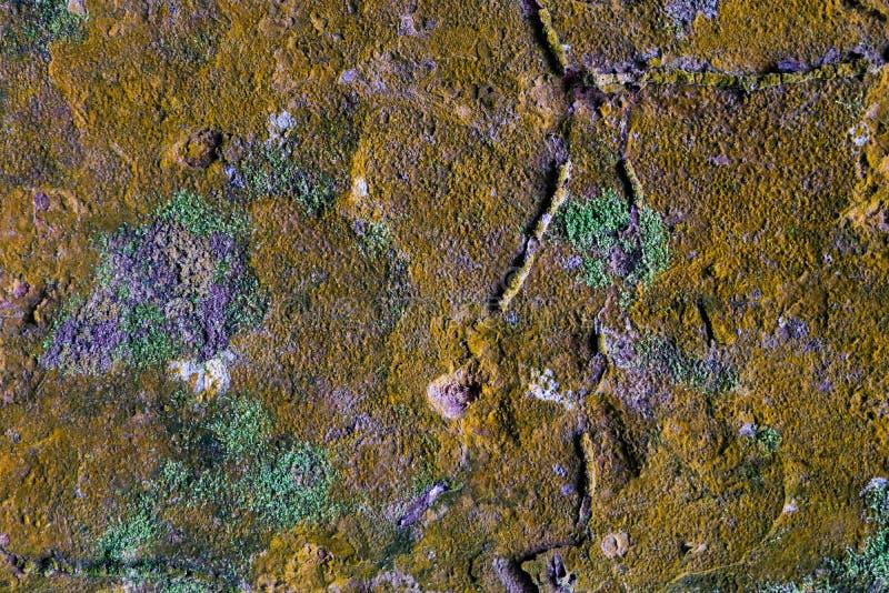 Grande fondo della roccia con muschio verde, pjhotography di struttura fotografia stock