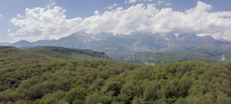 Grande forêt sauvage de noix d'Arslanbob à Jalalabad Pousse d'Arial Dron photographie stock libre de droits