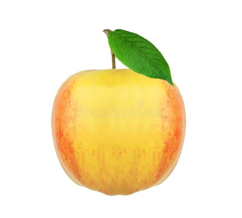 Grande frutta fresca della mela con la foglia verde isolata su bianco immagine stock libera da diritti