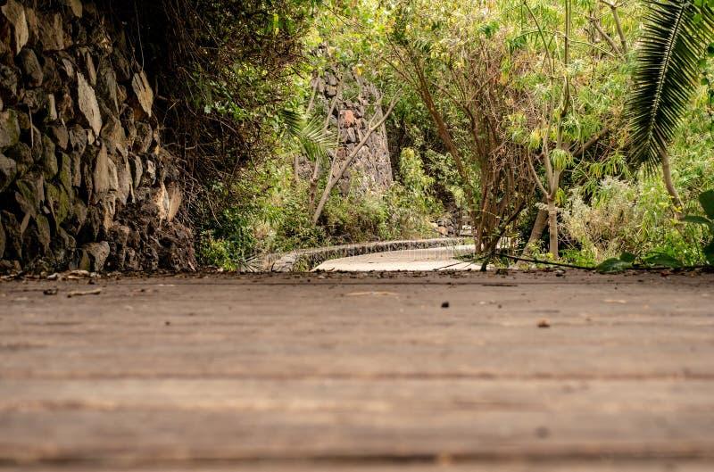 Grande fuga de caminhada nas Ilhas Canárias fotos de stock royalty free