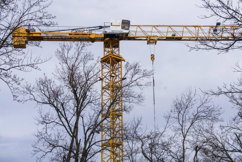 Grande grue de construction jaune avec des dessus d'arbre image libre de droits