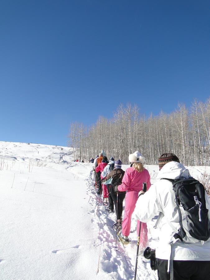 Grande grupo de caminhantes do snowshoe fotografia de stock