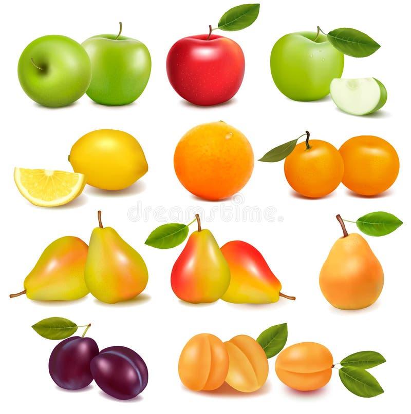 Grande gruppo di frutta fresca differente. illustrazione di stock