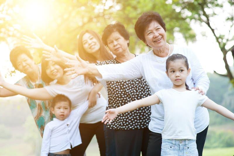 Grande gruppo di multi delle generazioni della famiglia divertimento asiatico all'aperto fotografia stock