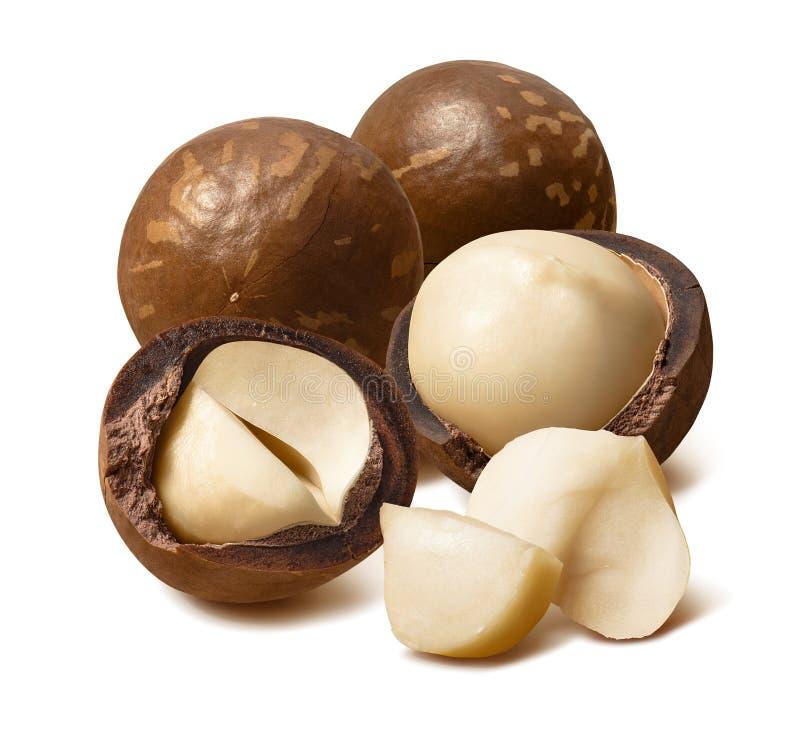 Grande gruppo di noci di macadamia isolate su fondo bianco immagine stock