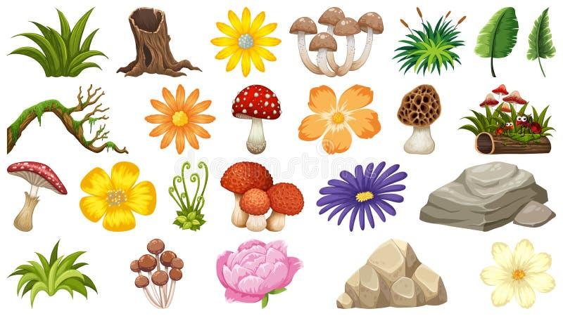 Grande gruppo di tema isolato degli oggetti - natura illustrazione di stock