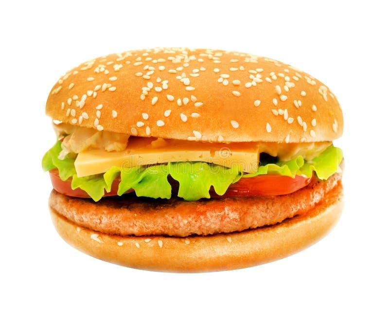 Grande hamburger saporito delle foto fotografia stock libera da diritti